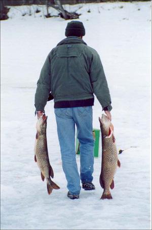 Форум рыбаков Тверской области